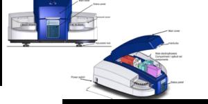 Deltadot High Performance Capillary Electrophoresis